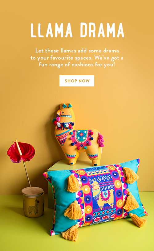 Cushions by Chumbak!